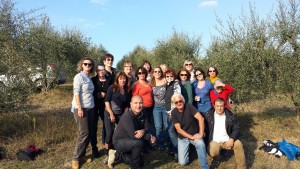 Olive Harvest Adventure Group